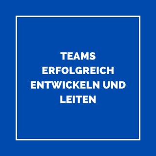 Angebot_Team_Entwickeln